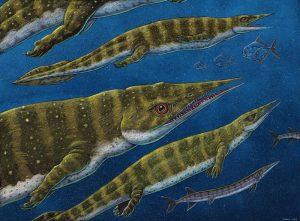 Artwork depicting what the new thalattosaur species, Gunakadeit joseeae, may have looked like in life.