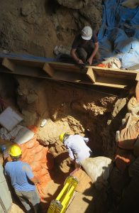 Image showing archaeologists at work at the excavation site.