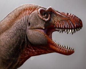 Meet the Reaper of Death, a new Canadian tyrannosaur   EarthSky.org