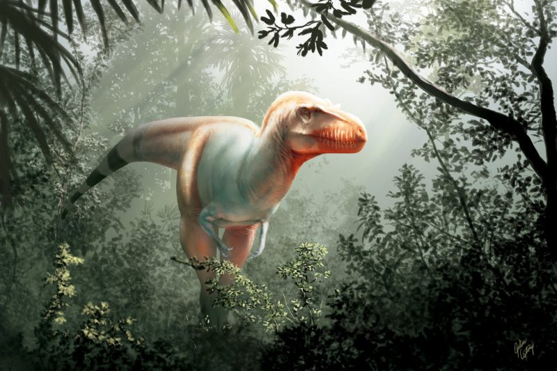 White tyrannosaur with striped tail and red head in a jungle setting.