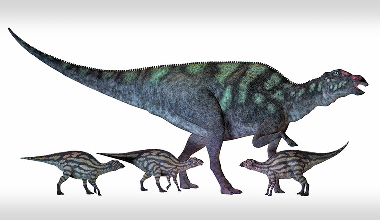 A big dinosaur and 3 smaller dinosaurs with camouflage-type stripes.