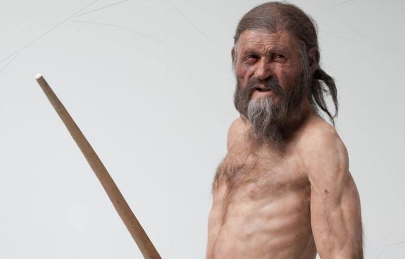 Stocky, tough-looking bare-chested man with a beard and long brown hair.