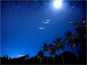 Moon and 4 planets above coconut trees.
