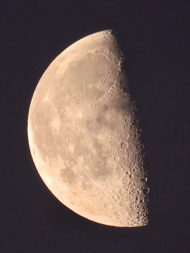 A nearly last quarter moon. The terminator line - or line between light and dark on the moon - is very slightly convex.