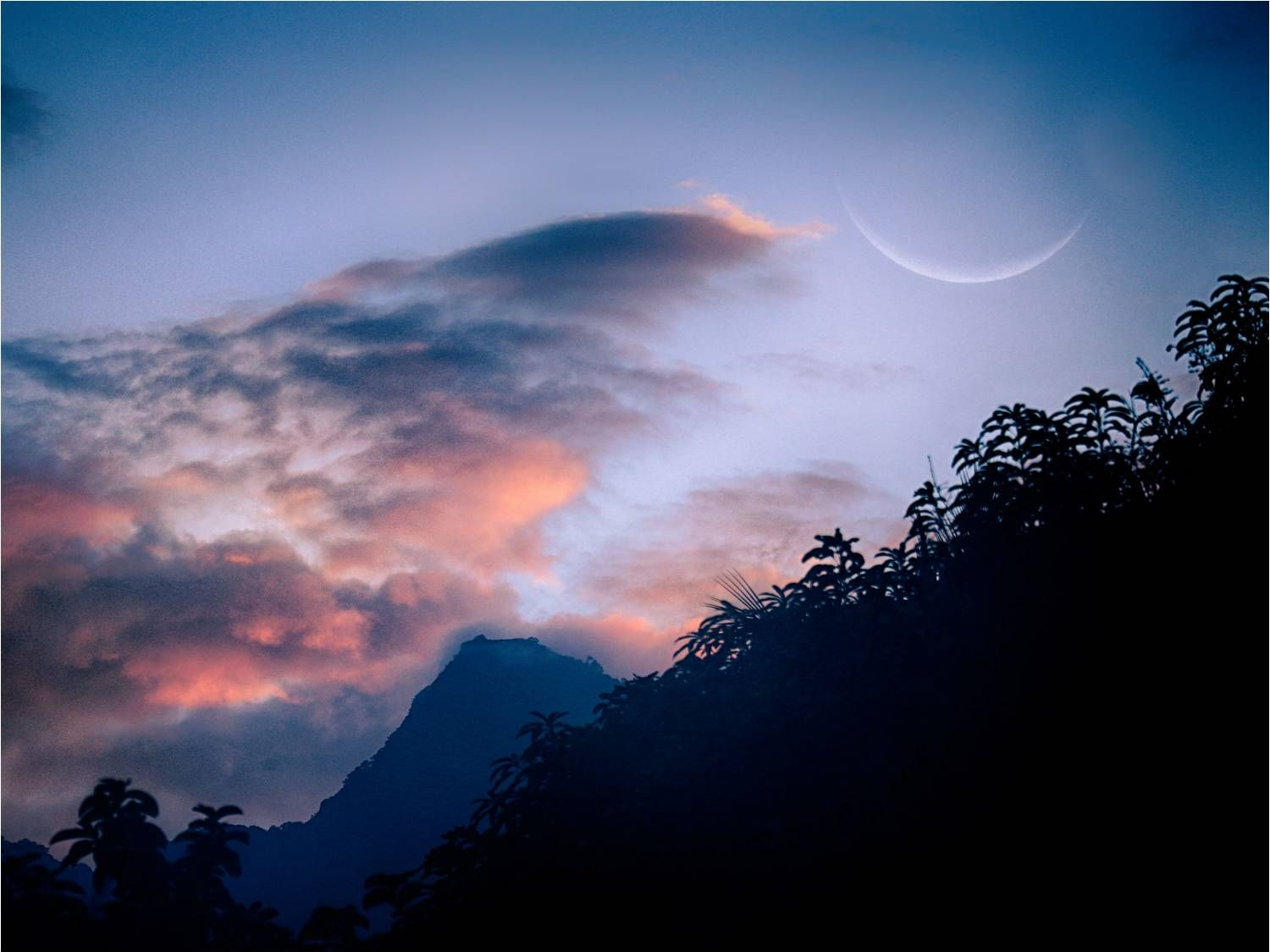 Jungle with steep mountain in distance and enormous crescent moon against the blue sky near pink clouds.