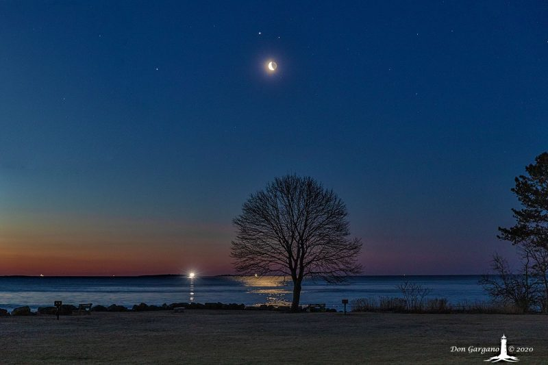 Moon and planets over a body of water with a symmetrical bare tree in the foreground, in a beautiful twilight sky.