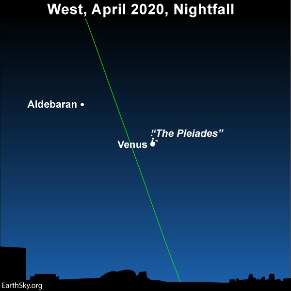 Chart of Venus and the Pleiades cluster after sunset April 2, 2020.