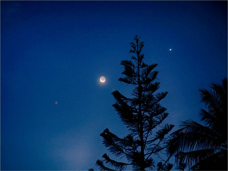 Crescent moon with two bright dots next to tall silhouetted evergreen tree.