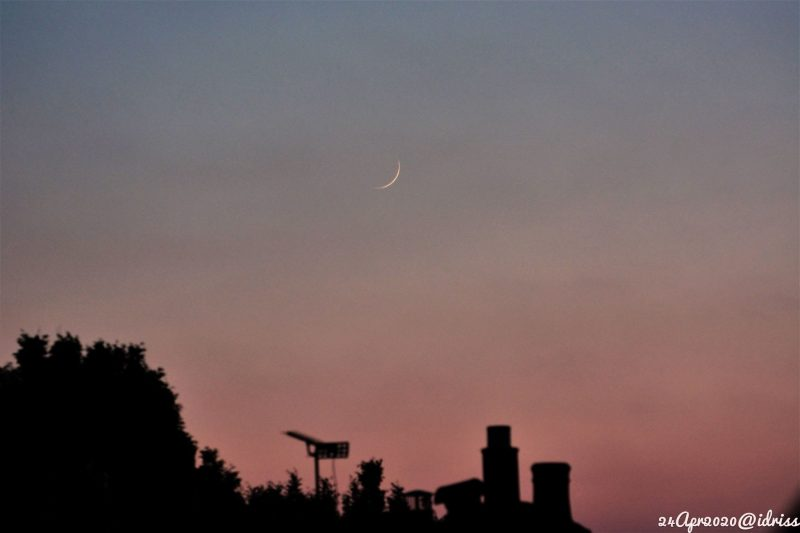 Thin crescent moon in sky fading from pink below to blue, above buildings and trees.