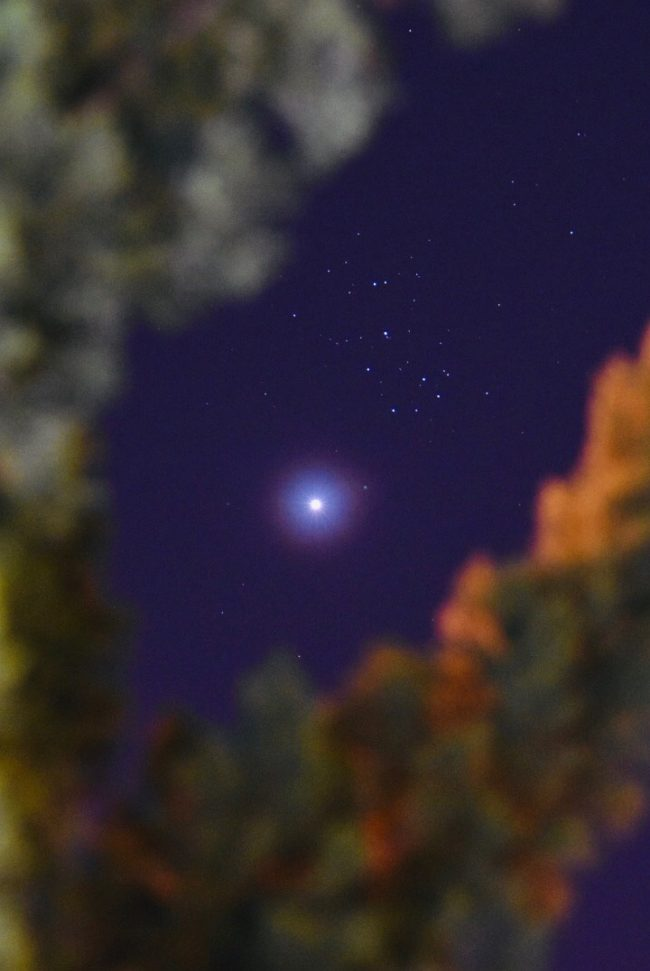 Bright Venus and cluster of many stars above.
