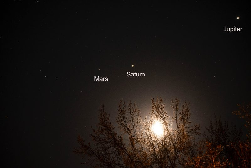 Moon through treetops and 3 labeled planets before sunup on April 15.