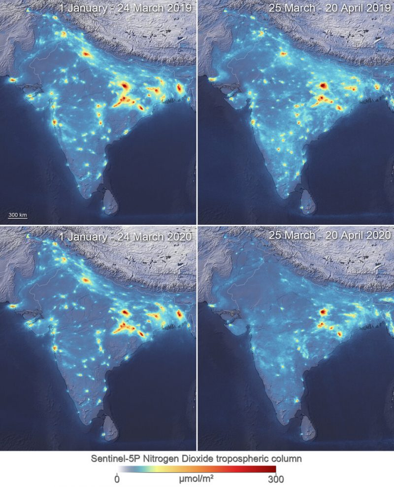 Four maps of India with red and yellow splotches lessening in extent.