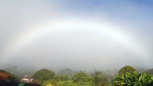 White rainbow in misty air over a wooded landscape.