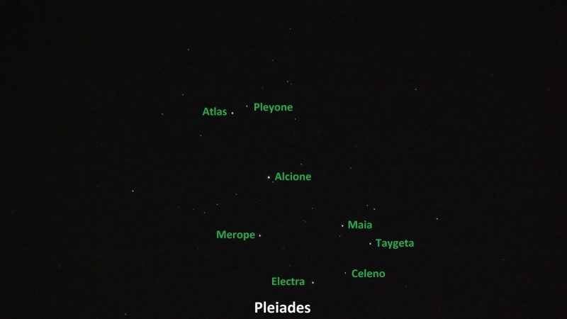 Eight stars with names beside them in green.