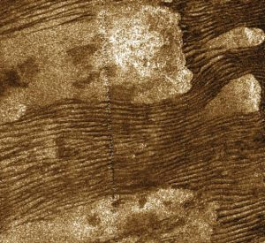 Long dark ripples on lighter brown surface.