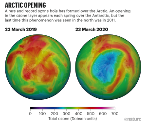 No ozone hole over the Arctic in March 2019; a large ozone hole over the Arctic in March 2020.