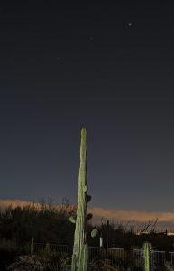 Saturn, Mars, Jupiter before sunup, behind a saguaro cactus.