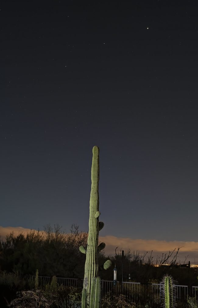 Saturn, Mars, Jupiter before sunup, behind a saguaro cactus.