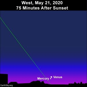 Mercury and Venus pair up together in the western evening twilight.