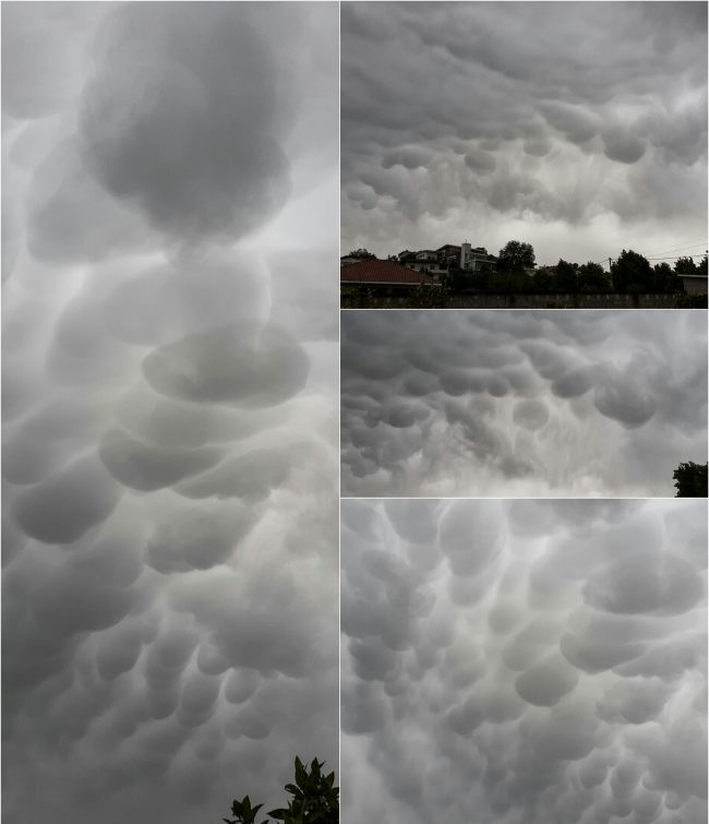 Three images of gray clouds with many downward bulges.
