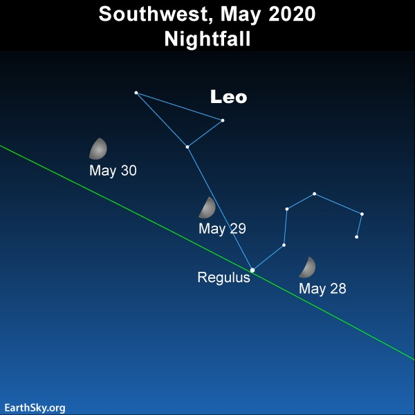 Moon swings in front of the constellation Leo the lion in late May 2020.