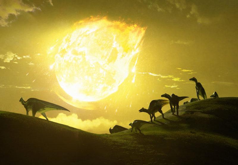 Silhouettes of running dinosaurs, with a giant yellow fireball flaming though the yellow sky.