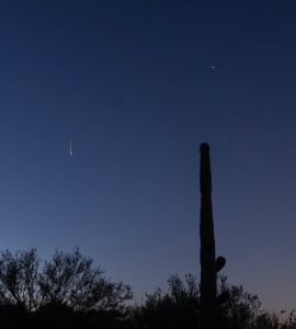 Meteor dropping straight down from a triangular-looking star pattern, with a Saguaro cactus in the foreground.