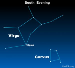 Sky chart of Corvus the Crow and Spica, the constellation Virgo's brightest star.