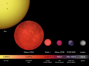 Artist's concept of stars of different sizes and masses.