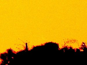 A yellow background, a treeline, and an exceedingly faint and partial crescent Venus.