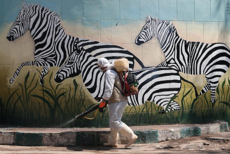Man in protective gear spraying disinfectant on a sidewalk beside a mural of zebras.