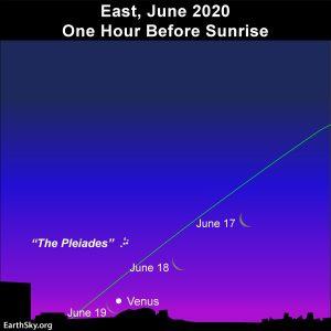Moon, Venus and the constellation Taurus at dawn.