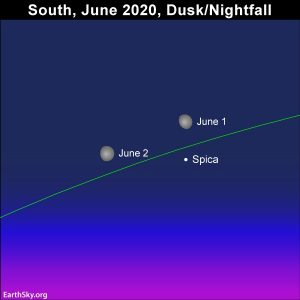 Moon and star Spica at nightfall in early June 2020.