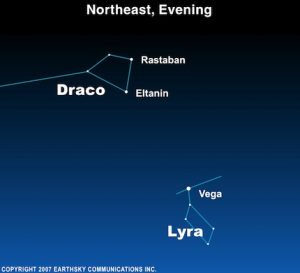 The fiery eyes of Draco the Dragon shine rather close to Vega, the Summer Triangle's brightest stat.
