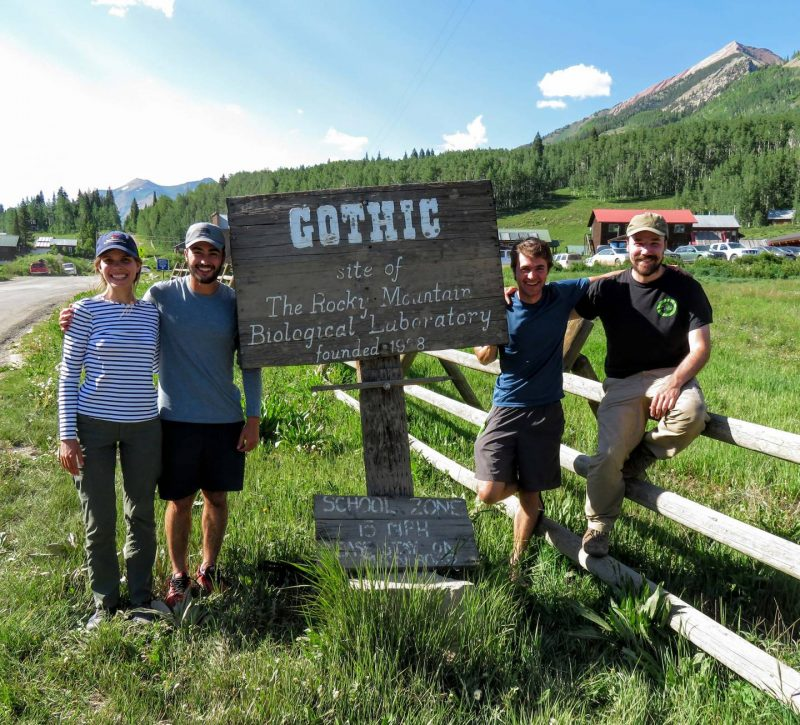 A team of four smiling people in a sunlit mountainous setting next to a road sign that says Gothic with other text.