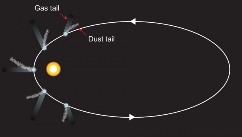 Diagram of oval orbit around the sun with several positions of comet with tails.