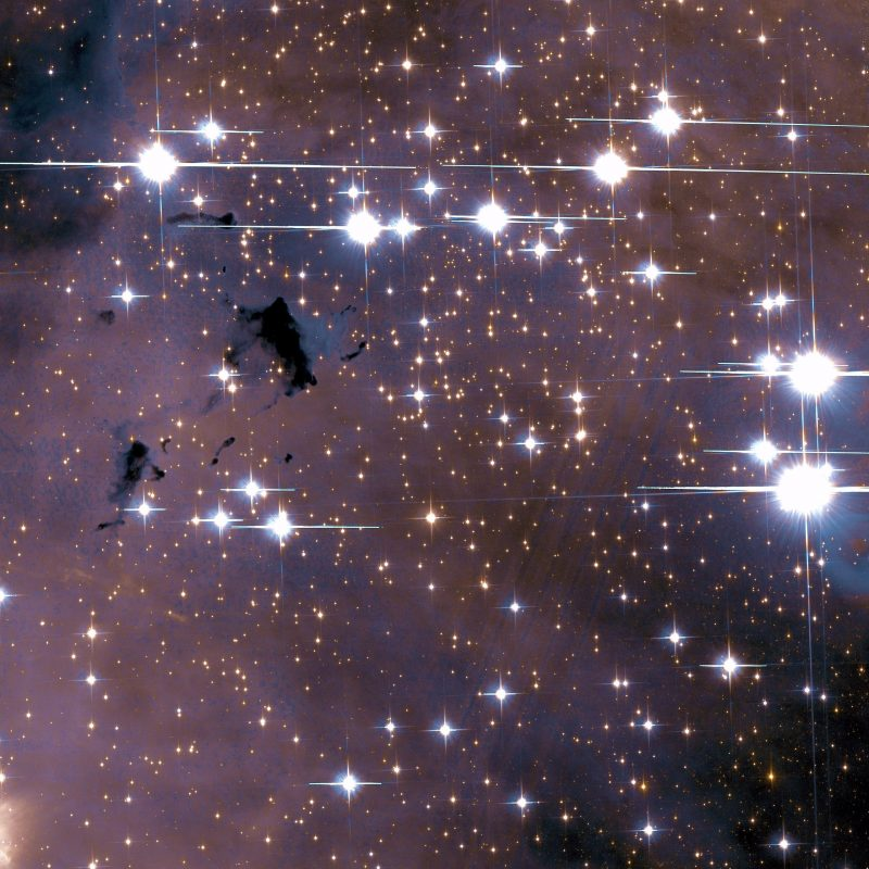 More than 20 extra-bright stars on starry background also with a few tiny dark nebulae.