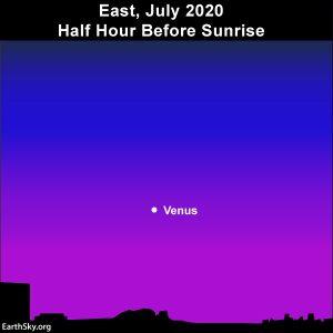 Venus low in the east before sunrise.