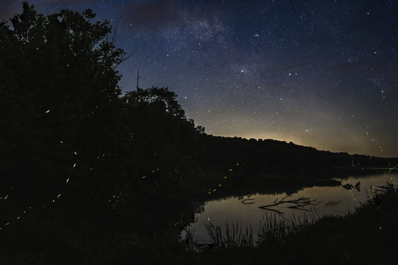 Night sky photo with sky objects over trees and water. Bright dashed lines in the foreground.
