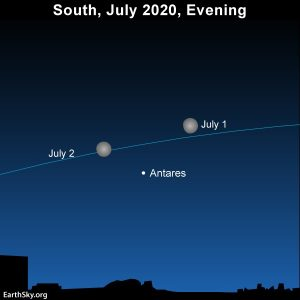 Moon and star Antares in southern sky at evening on July 1 and 2, 2020.