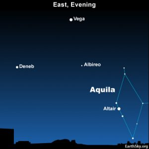 Altair, the brightest star in the constellation Aquila the Eagle, is a member of the Summer Triangle.