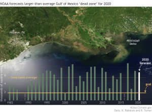Orbital view of Gulf Coast from Texas to Mississippi with bar graph at bottom.