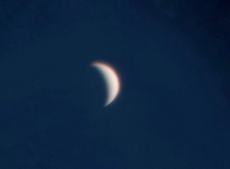 A slightly fuzzy, featureless crescent Venus.