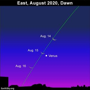 Waning crescent moon and Venus adorn the morning sky in mid-August 2020.
