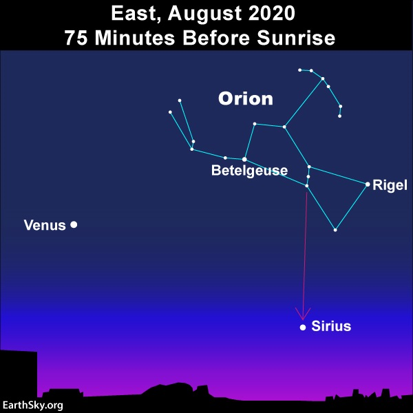Star chart showing Venus, Sirius and Orion.