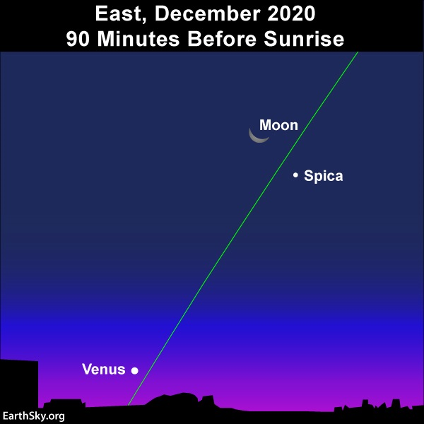 The moon shines north of the star Spica, and the moon's illuminated side points toward Venus.
