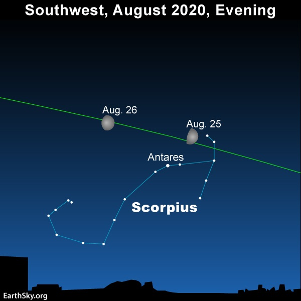 Moon sweeps by the constellation Leo on August 25 and 26, 2020.