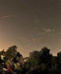 Meteor streaking above a treeline.