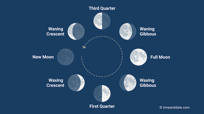 schematic illsutration of moon phases along a full moon cycle,  placed in a circle with annotations.