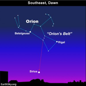 Orion the Hunter and Sirius, the brightest star of nighttime, adorn the August early morning sky.
